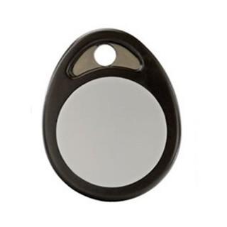 Badge format porte-clés pour lecteur de badges exterieur CLLB [- 6431109 - Delta Dore]