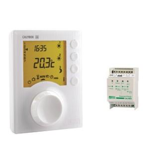 CALYBOX 110, 120 et 120 WT [- Gestionnaire d'énergie à programmation libre - 1 ou 2 zones - Delta Dore]
